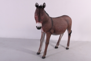 Donkey -Brown JR 080044B
