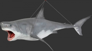Shark Great White 12ft - Hanging (JR 100073)