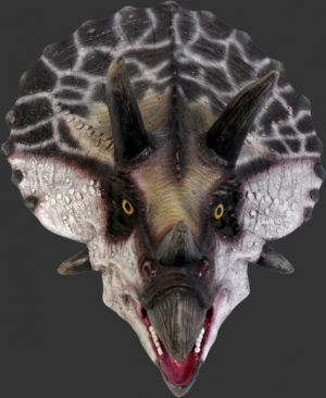 Definitive Triceratops Head (JR 110081)