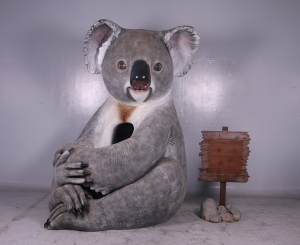 Koala Bear with signboard (JR 150023S)