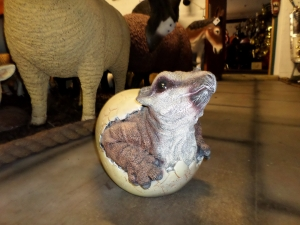 Triceratops Baby in an Egg (JR 140035)