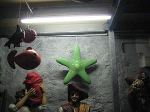 Bubbles Starfish 2.5ft (JR C-096)