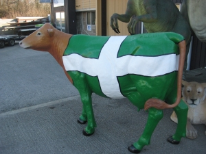 Devon Flag Cow (JR DFC)