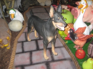Doberman (JR 2935)