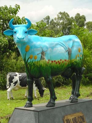 Holland Cow life-size (JR 7001)