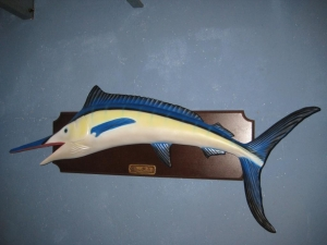 Blue Marlin Mounted (JR 2117)