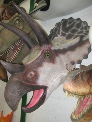 Triceratops Head (JR 110016)