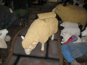 Merino Sheep Head Down Esky (JR 020409esky)