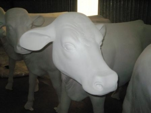 Cow - Smooth White head up without horns (JR SB006)