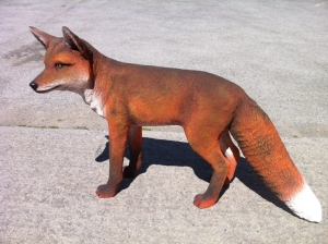 Red Fox (JR 100103)