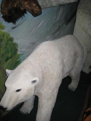 Polar Bear (JR 110009)