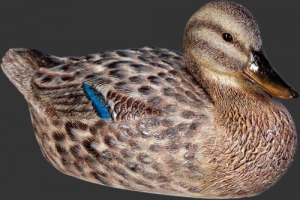 Duck - Mallard Female (JR 110020)
