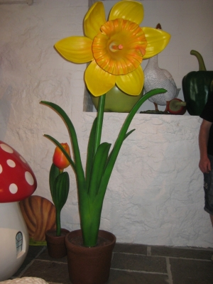 Daffodil 5ft (JR 2140)
