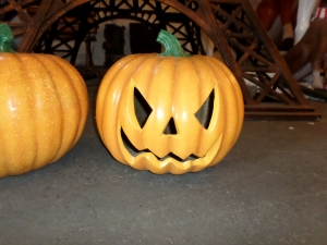Pumpkin 2 (JR 150084)