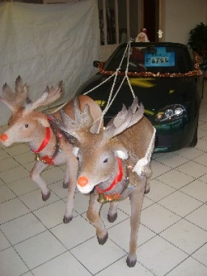 Reindeer life-size model (JR 966)