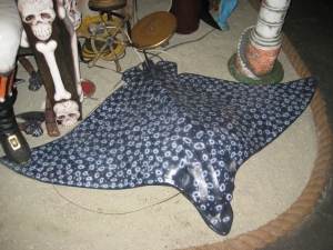 Spotted Eagle Ray (JR 100060)