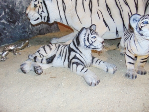 Tiger Cub Lying down - Siberian White (JR 110122)