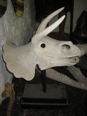 Triceratops Skull on base (JR 080046RS)