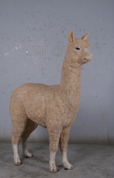Alpaca (JR 080074) -Light - Thumbnail 03