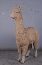Alpaca (JR 080074) -Light - Thumbnail 01
