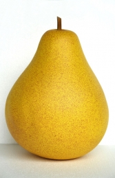 Pear 2ft (JR IM)