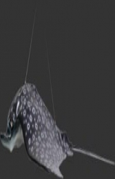 Spotted Eagle Ray (JR 100060) - Thumbnail 02
