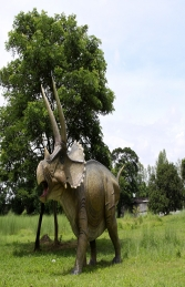 Giant Triceratops (JR 140098)