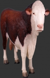 Hereford Bull (JR 160034)