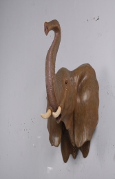 Elephant Head (JR 170186)