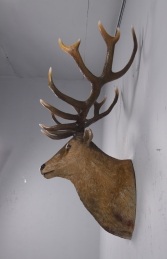 Grand Stag Head Wall Decor -JR 170216 - Thumbnail 03