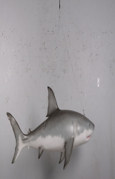 Great white shark 6ft JR 190019 - Thumbnail 02