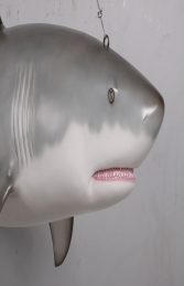 Great white shark 6ft JR 190019 - Thumbnail 03