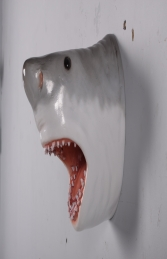 Great White Shark Head JR 190033 - Thumbnail 02