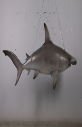 Scalloped hammerhead shark 6ft -JR 190101 - Thumbnail 01