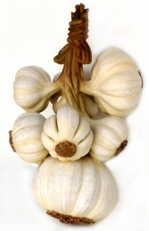 Bunch of Garlic 3.5ft (JR 2516) - Thumbnail 02