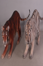 Bengal Tiger White (JR 100016)		 - Thumbnail 02