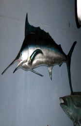 Blue Marlin (JR 130078) - Thumbnail 01
