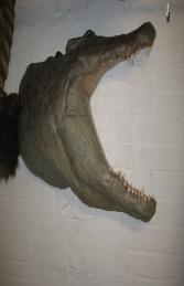 Crocodile Head Wall Plaque (JR 110086) - Thumbnail 01