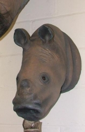 Rhino Head Baby (JR 2537)