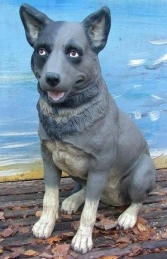 "Sheep-Dog sitting ""Blue Heeler"" (JR 080072) - Thumbnail 02"