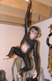 Monkey / Chimpanzee Baby (JR 080079) - Thumbnail 02
