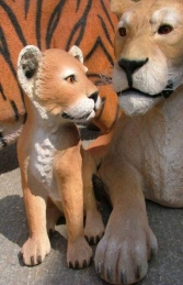 Lion Cub - Sitting (JR 080118) - Thumbnail 02