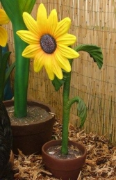 Sunflower 3ft (JR 2203)    - Thumbnail 01