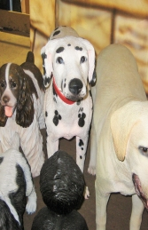 Dalmatian Dog (JR 2989) - Thumbnail 02