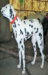 Dalmatian Dog (JR 2989) - Thumbnail 03