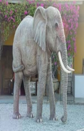 Elephant Adult 3m tall (JR 2231 A/B) - Thumbnail 02