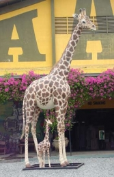 Giraffe Life-size 19ft tall (JR 2250) - Thumbnail 02