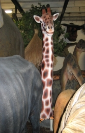 Giraffe Head (JR 100020)