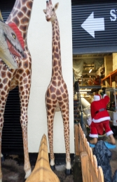 Giraffe 12ft (Half) (JR 140119)