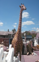 Giraffe 18ft (JR 140039)